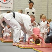 Judo Delft